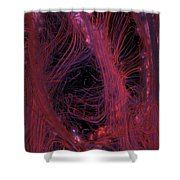 Synapsis Shower Curtain