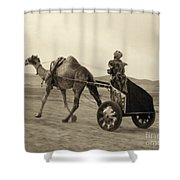 Syria: Camel Race, C1938 Shower Curtain