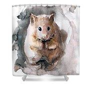 Syrian Hamster Shower Curtain