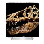T-rex Skull Shower Curtain