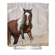 T Square Shower Curtain