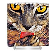 Tabby Cat Licking Paw Shower Curtain