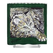 Tabby Cat With Cricket Trinket Box Shower Curtain