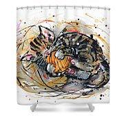 Tabby Kitten Playing With Yarn Clew  Shower Curtain