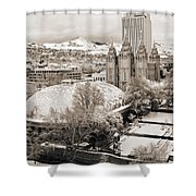Tabernacle And Temple Shower Curtain