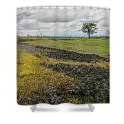 Table Mountain Landscape Shower Curtain