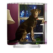 Table Ornament Shower Curtain