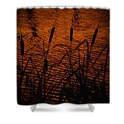 Tails Shower Curtain