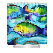 Take Care Of The Fish Shower Curtain