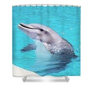 Take Me Home Shower Curtain by Saifon Anaya