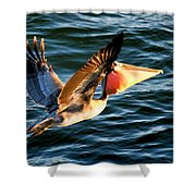 Take-out Shower Curtain