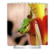 Take That Leap Shower Curtain