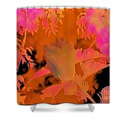 Take Three Floral Abstract Shower Curtain