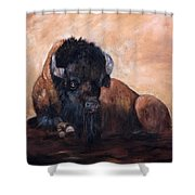 Takin' A Break Shower Curtain