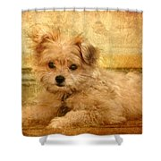 Taking A Break Shower Curtain by Angie Tirado