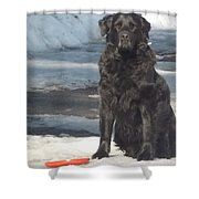 Let's Play Shower Curtain