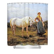 Taking A Horse To Water Shower Curtain
