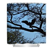 Taking Flight South Africa Shower Curtain