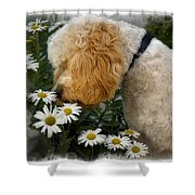 Taking Time To Smell The Flowers Shower Curtain