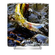 Tale Of The Wild Koi Shower Curtain