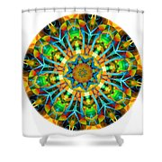 Talisman 3583 Shower Curtain