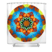 Talisman 3593 Shower Curtain