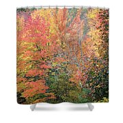 Tall And Wide Shower Curtain