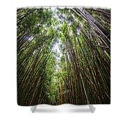 Tall Bamboo Shower Curtain