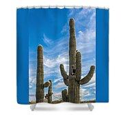Tall Cacti Shower Curtain