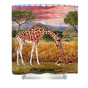 Tall Love From Above Shower Curtain