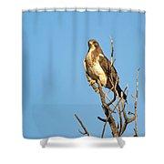 Tall N Proud Shower Curtain