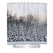 Tall 'n Small Shower Curtain