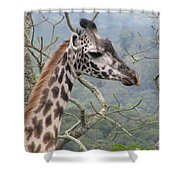 Tall One Shower Curtain