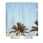 Tall Palm Shower Curtain