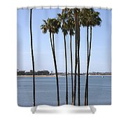 Tall Palms Shower Curtain