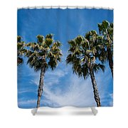 Tall Palms Couples Shower Curtain