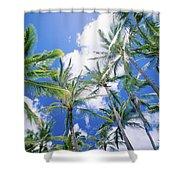 Tall Palms Shower Curtain
