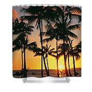 Tall Sunset Palms Shower Curtain