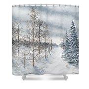 Tamarack Swamp In Winter 2  Shower Curtain