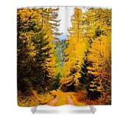 Tamarack Trail Shower Curtain