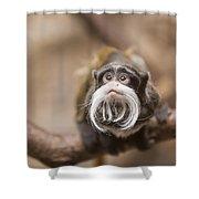 Tamarin Monkey 1 Shower Curtain