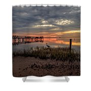 Tampa  Shower Curtain
