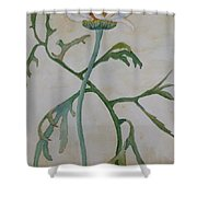 Tanacetum Shower Curtain