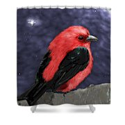 Tanager Shower Curtain
