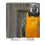 Tanganyika 0088 Shower Curtain