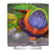 Tanganyika 0102 Shower Curtain