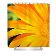 Tangerine Side Bloom Shower Curtain