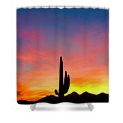Tangible Journey Shower Curtain