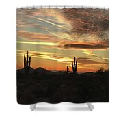 Tangible Light Shower Curtain