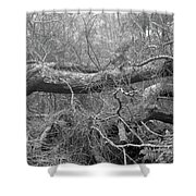 Tangle Shower Curtain